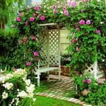 Плетущиеся растения для сада многолетние