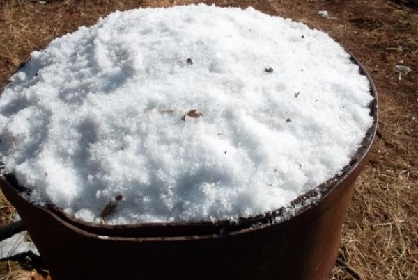 Чистый снег собираем в бочки для получения талой воды
