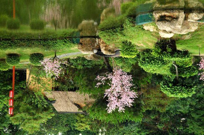Декоративный пруд в Англии мало чем отличается от естественного