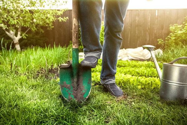 Эффективность лопаты можно увеличить заточкой зубьями