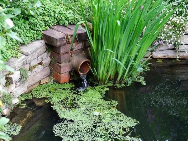 Если рядом есть ручей, можете обеспечить постоянную циркуляцию воды