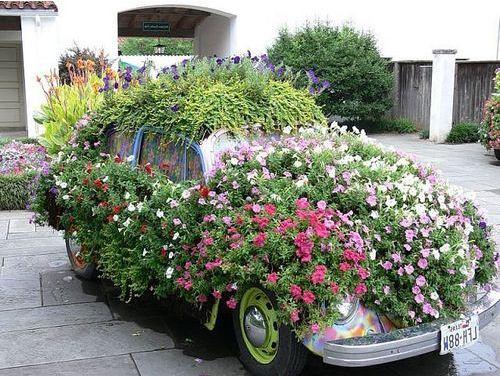Фото цветника на машине