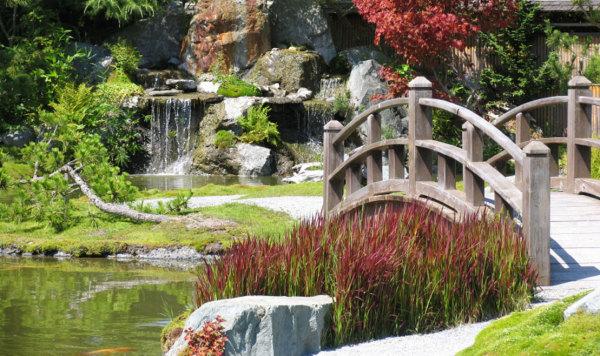 Фото пруда в китайском стиле