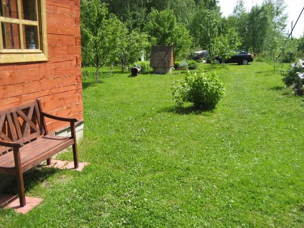 Газон, переходящий в сад