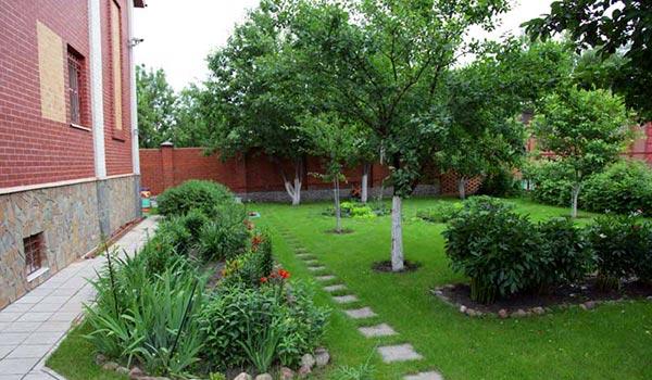 Хороший фруктовый сад – лучшее украшение загородного дома