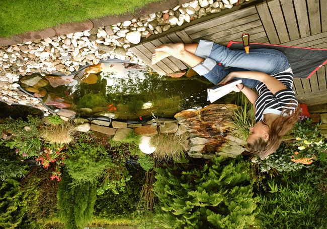 Искусственный пруд – отличное место для отдыха