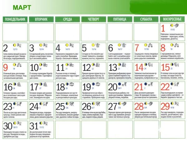 Календарь садовода на март 2015 поможет не пропустить сроки подготовки к сезону