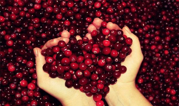 Клюква – вкусная и невероятно полезная ягода