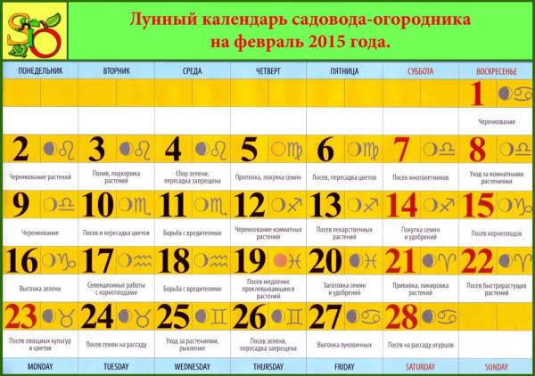 Лунный календарь садовода огородника на февраль позволит распланировать все мероприятия