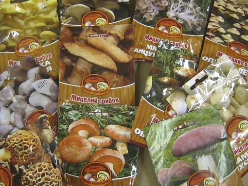 Мицелии самых разнообразных грибов несложно найти в садовых магазинах (цена–от 80 руб.)