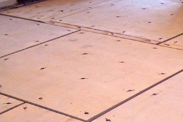 Многослойная фанера, уложенная на бетонную стяжку