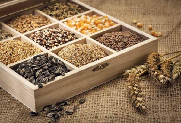 На фото - семена, которые нужно заготовить до начала сезона