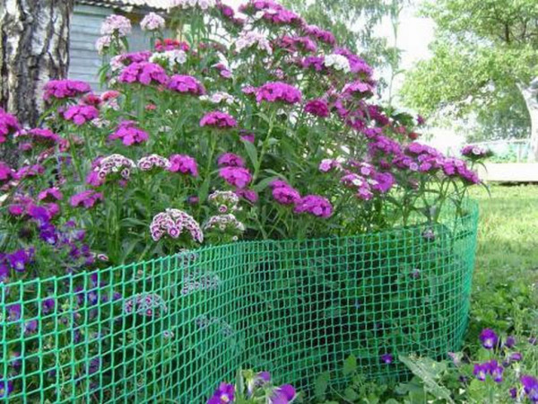 Надежная пластиковая ограда для растений