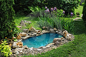 Небольшой пруд в саду должен быть обязательно