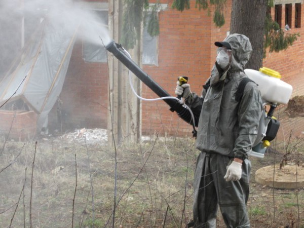 Обработка инсектицидом от щитовки