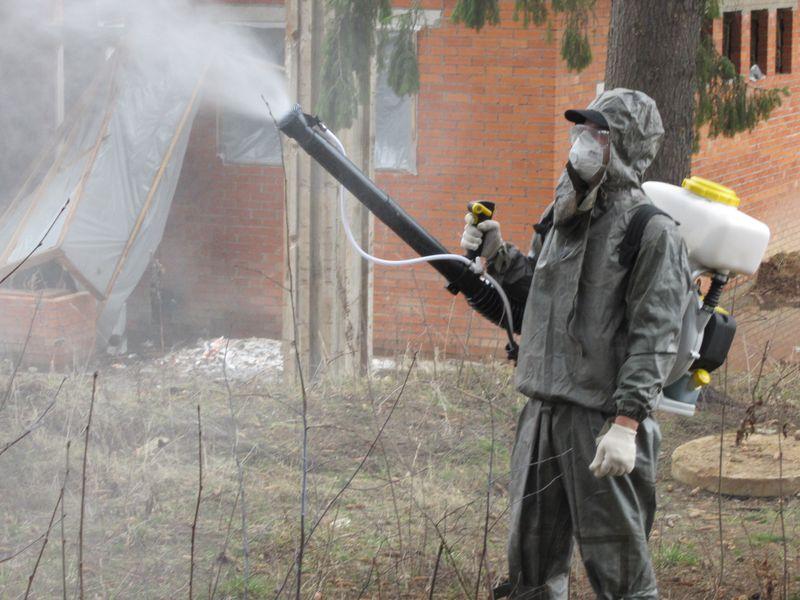 Обработка инсектицидом от