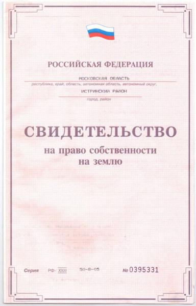 Основной документ для регистрации в упрощенном порядке или по амнистии.
