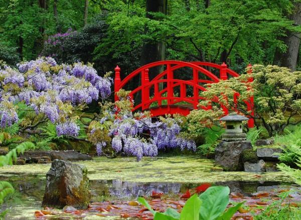 Отлично вписываются астильбы в дизайне сада в японском стиле