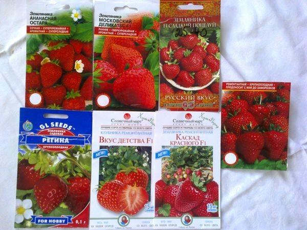 Покупать саженцы и семена лучше в проверенных местах, так вы защитите себя от подмены сортов
