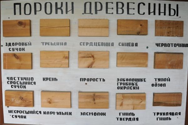 Пороки древесины.