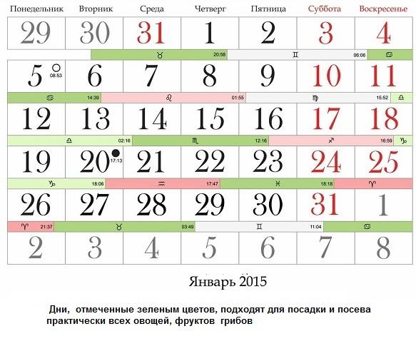 Пример Лунного календаря на январь