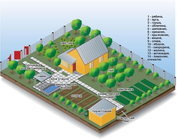 Пример планирования садового участка