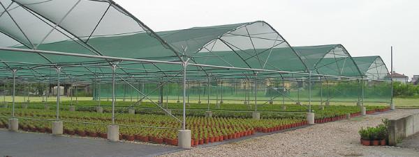 Проект промышленного сада на примере Старой Руссы