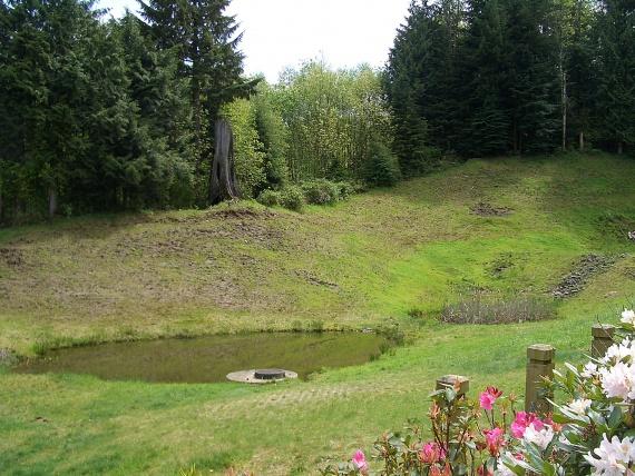 Пруд – это еще и миниатюрное водохранилище