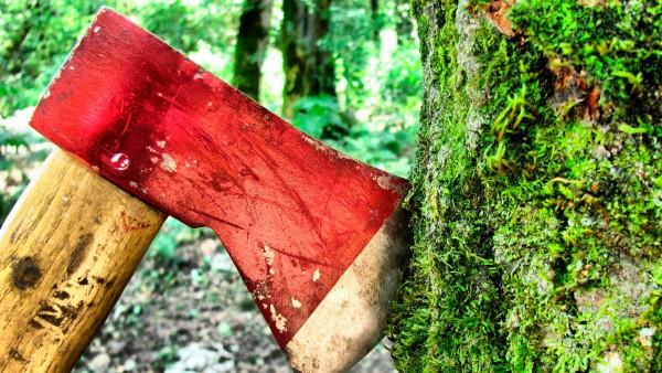 Рубка деревьев своими руками – одно из тяжелейших заданий, возникающих на участке, но у нас есть несколько советов