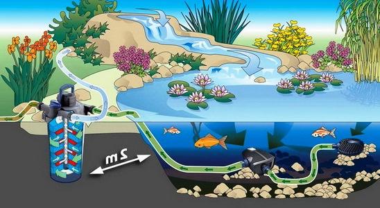 Схема обустройства проточного пруда