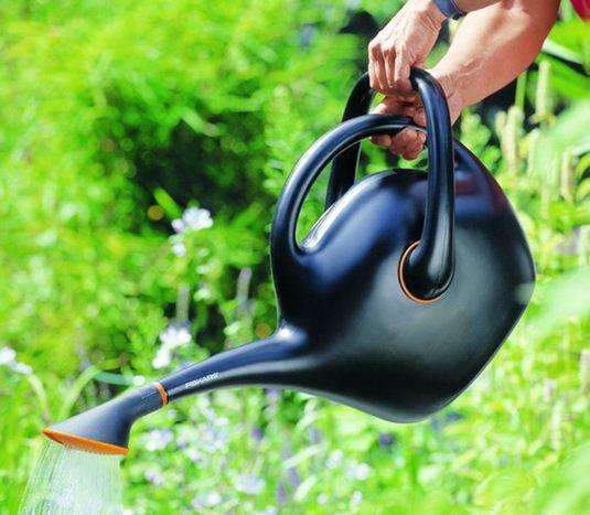 Соответствующий уход за пионами в саду включает в себя своевременный полив