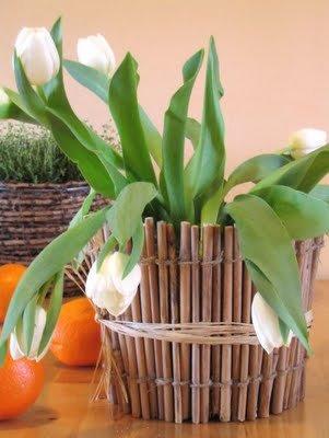 Yeşil Adjika: pişirme reçete, malzemeler