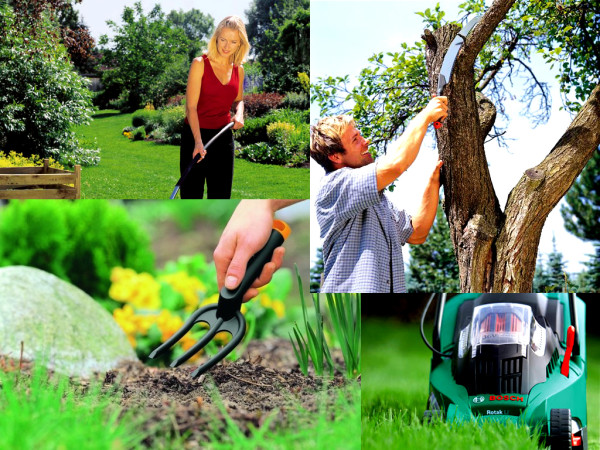 Тема этого материала - инструменты для садоводов.