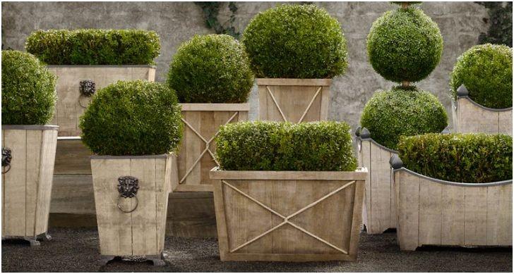 садовые горшки 35 фото видео инструкция по выбору своими