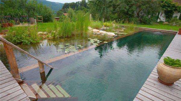 В этом примере пруд объединен с бассейном