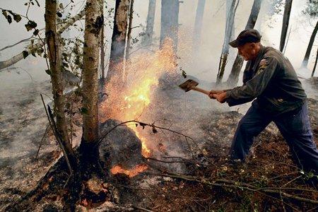 Важно остановить распространение огня