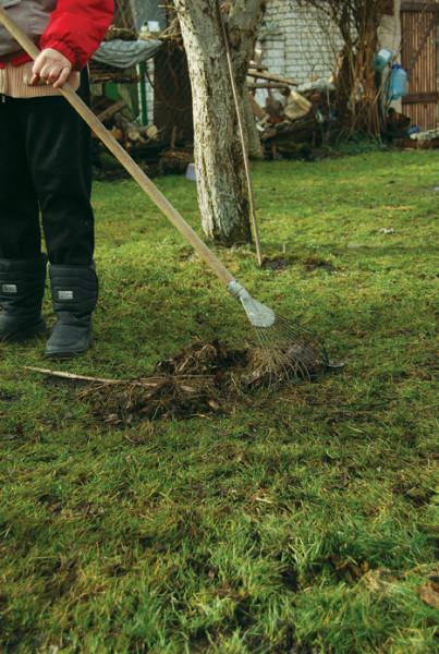 Веерные грабли для сбора листвы и травы - инвентарь для сада и дачи