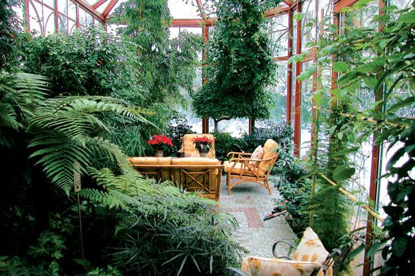 Влажность и высокая температура – основные требования для тропических зимних садов