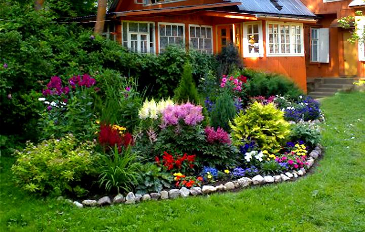 Красивые цветники своими руками на даче фото