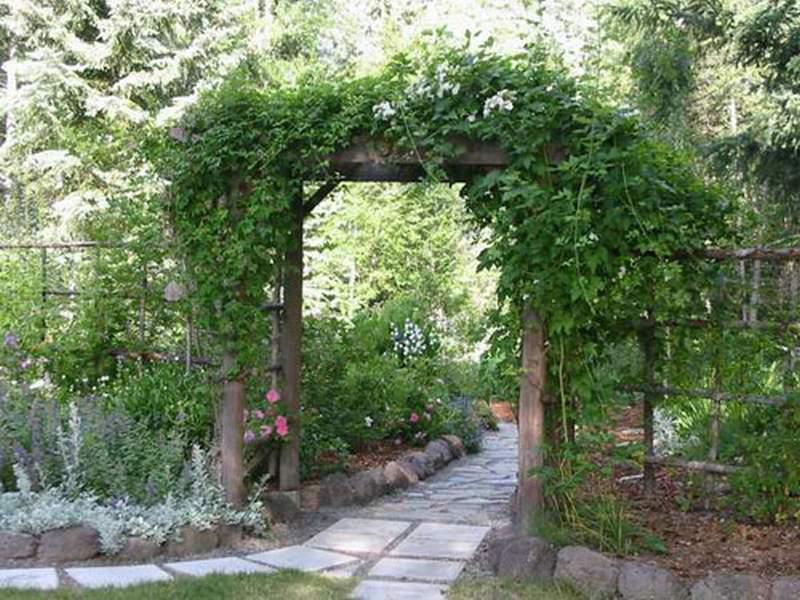 Садовая арка для цветов на даче своими руками: мастер 38