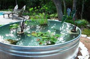 Бюджетный вариант водоема в емкости