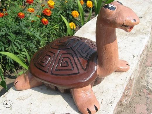cherepashka--shokoladnaya-koketka Поделки из гипса для сада (36 фото): видео-инструкция как сделать своими руками, особенности игрушек, скульптур, фото