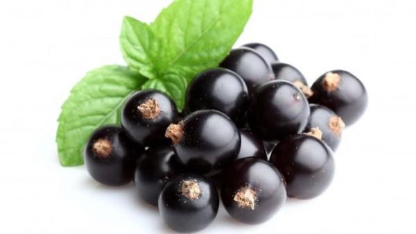 Чтобы сохранить максимум полезных свойств черной смородины, ее нужно замораживать