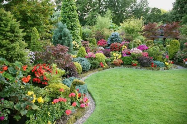 Декоративные кустарники создадут необыкновенную атмосферу в вашем саду