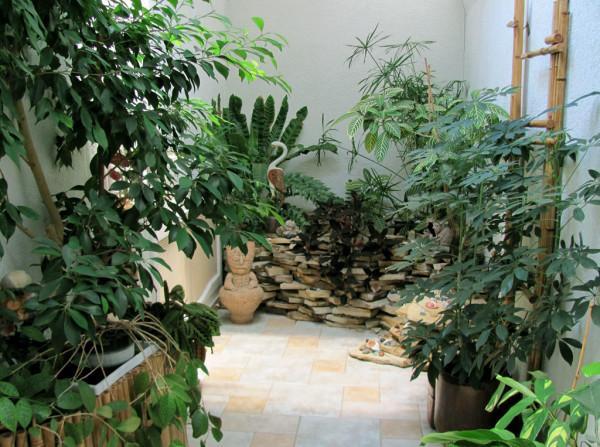 Для создания оранжереи подберите отдельное помещение в квартире