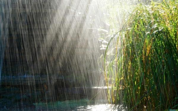 Дождь безопасен только для каменной и пластиковой мебели