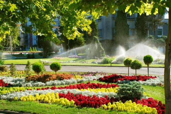 Дождевальные установки для полива тропических растений.
