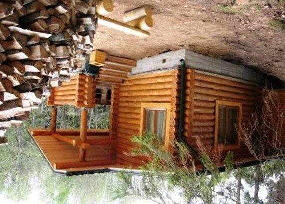 Дрова – традиционный и любимый многими вид топлива.