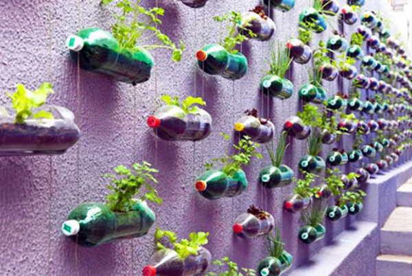 Экономия места и свежая зелень к столу