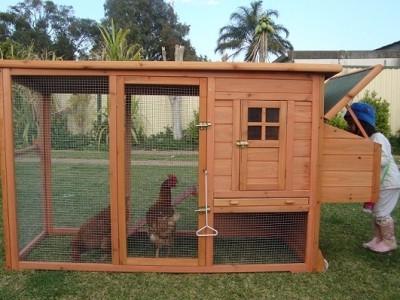 Это сооружение позволит без проблем содержать кур.